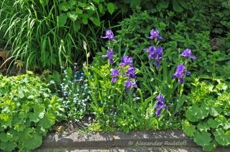 Foto-73d-(56)-Gartenkunst