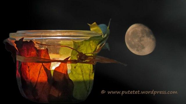 Foto-77b-(90)c-Herbstlicht